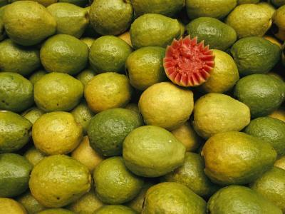Display of Guavas in an Open Air Market on Copacobana Beach-Richard Nowitz-Photographic Print