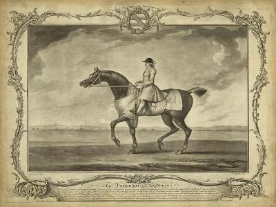Distinguished Horses II--Art Print