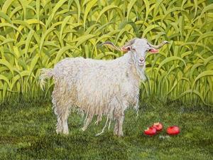 Alan's Goat by Ditz