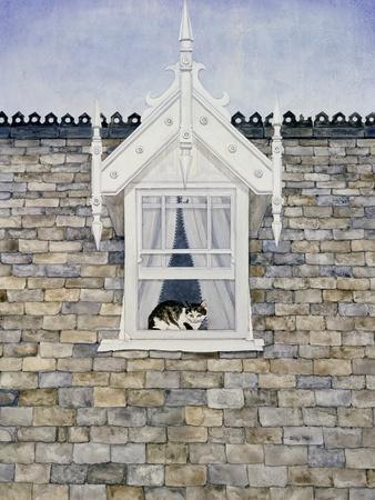 St.Helier Dormer Cat