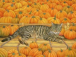 The Pumpkin-Cat, 1995 by Ditz