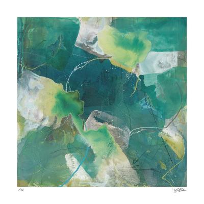 Dive 5-Liz Barber-Giclee Print