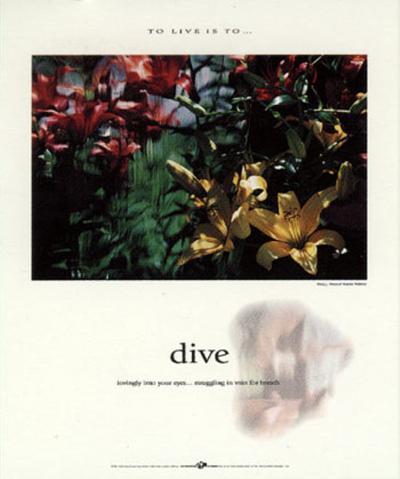 Dive-Francis Pelletier-Art Print
