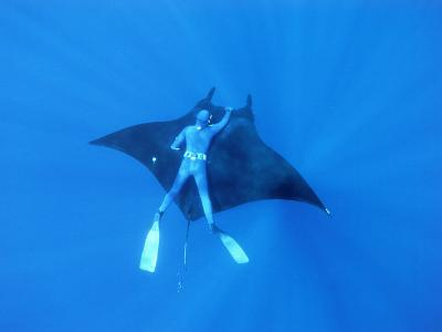 Diver Holds on to Giant Manta Ray, Mexico-Jeffrey Rotman-Photographic Print