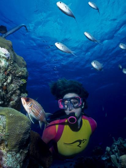 Diver Looking at Squirrelfish (Holocentrus Adscensionis) on Voral Head-Michael Lawrence-Photographic Print