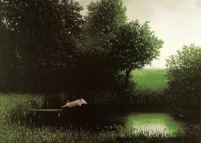 Diving Pig-Michael Sowa-Art Print
