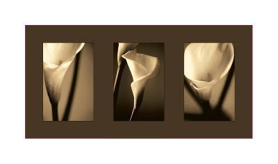 Divinity-Cinzia Ryan-Giclee Print