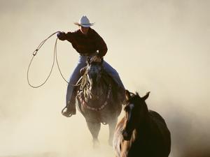 Cowboys Lassoing on the Range by DLILLC