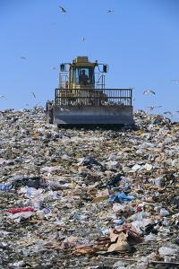 Garbage Dump by DLILLC