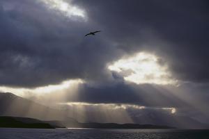 Sunlight Breaking through Clouds by DLILLC