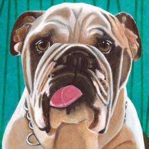 Dlynn's Dogs - Bosco by Dlynn Roll