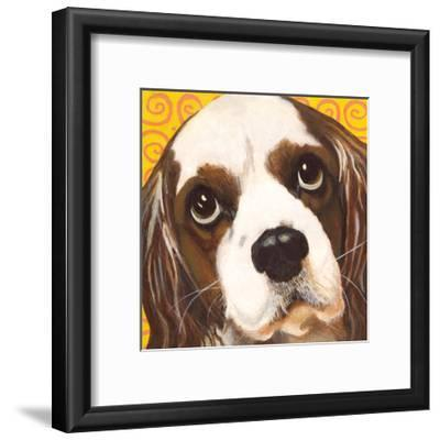 Dlynn's Dogs - Charlie