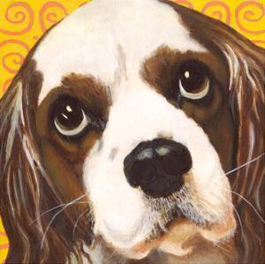 Dlynn's Dogs - Charlie by Dlynn Roll