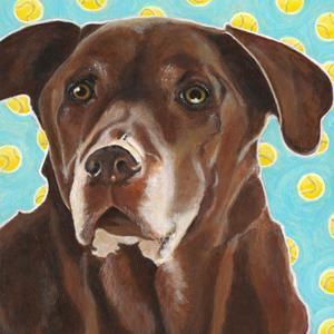 Dlynn's Dogs - Get Your Ball by Dlynn Roll
