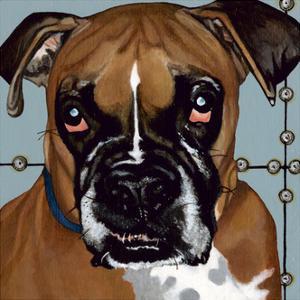Dlynn's Dogs - Rocco by Dlynn Roll