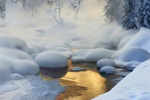 Siberia. -37?C (-35?F) by Dmitry Dubikovskiy