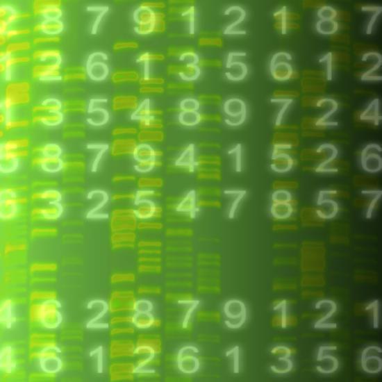 DNA Autoradiogram, Artwork-Mehau Kulyk-Photographic Print