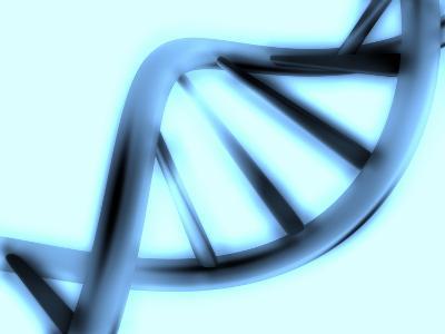 DNA Helix-PASIEKA-Premium Photographic Print