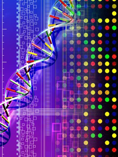 DNA Microarray And Double Helix Photographic Print by PASIEKA | Art com