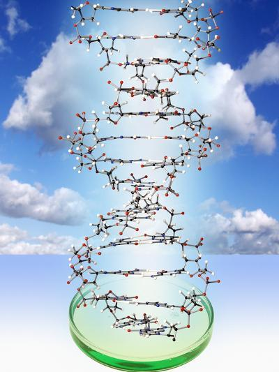DNA Molecule And Petri Dish-Victor De Schwanberg-Photographic Print