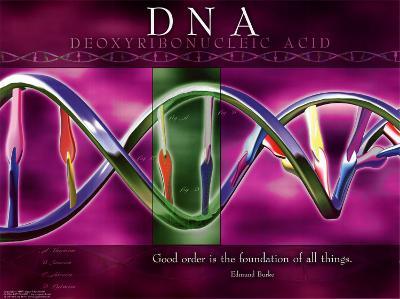 DNA--Art Print