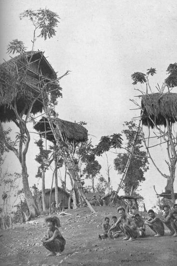 Dobos, tree houses for unmarried women in Melanesia, 1902-W Lindt-Photographic Print