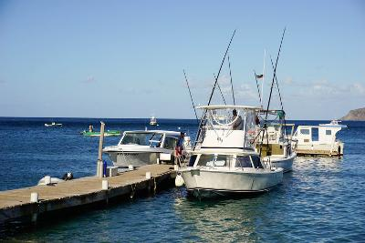Dock at Oualie Beach, Nevis, St. Kitts and Nevis-Robert Harding-Photographic Print