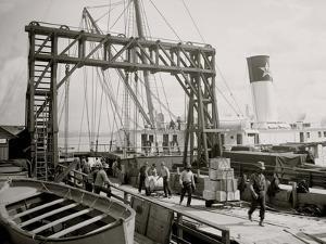 Dock Conveyors, New Orleans, La.