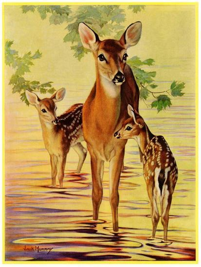 """""""Doe and Fawns,""""April 29, 1933-Jack Murray-Giclee Print"""