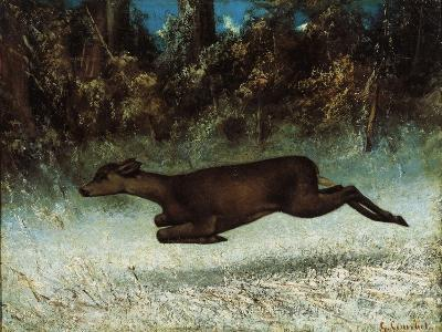 Doe Leaping, 19th Century-Gustave Courbet-Giclee Print