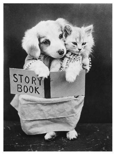 Dog and Cat Reading--Photographic Print