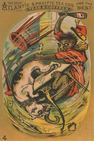 Dog and Monkey Fight