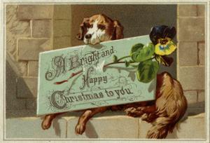 Dog and Xmas Greeting