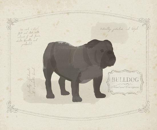Dog Club - Bulldog-Clara Wells-Art Print