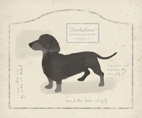 Dog Club - Dachshund-Clara Wells-Art Print