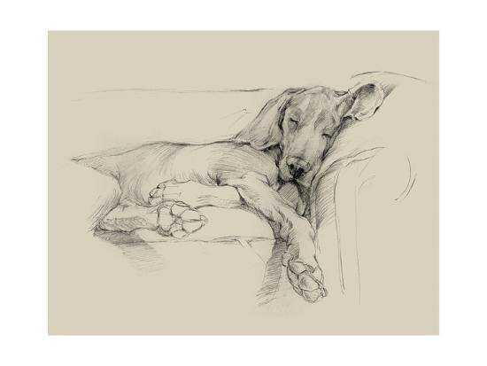 Dog Days I-Ethan Harper-Art Print