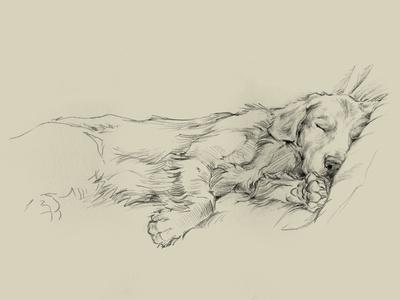 https://imgc.artprintimages.com/img/print/dog-days-iii_u-l-q1a0e820.jpg?artPerspective=n