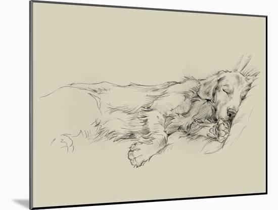 Dog Days III-Ethan Harper-Mounted Art Print