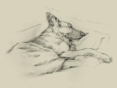 Dog Days IV-Ethan Harper-Art Print