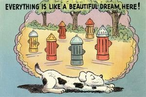 Dog Dreaming of Hydrants