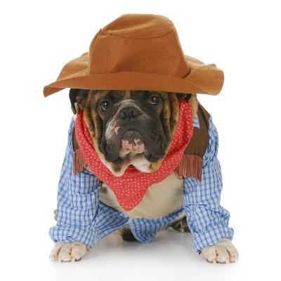 Dog Dressed Up Like a Cowboy-Willee Cole-Photographic Print