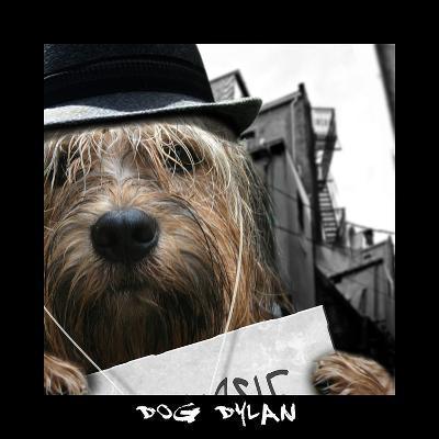 Dog Dylan-Noah Bay-Art Print