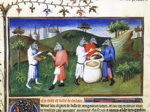 Dog-Headed Men, Late 13th Century