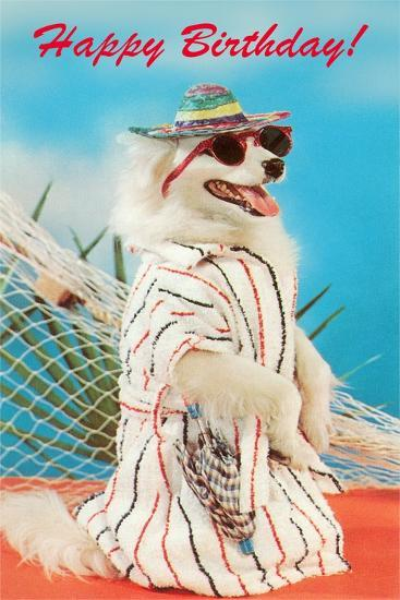 Dog in Sungglasses--Art Print