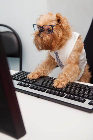 Dog Manager-Okssi-Photographic Print