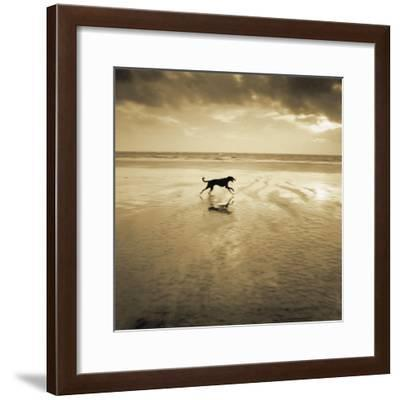 Dog on the Beach, West Wittering-Jo Crowther-Framed Giclee Print