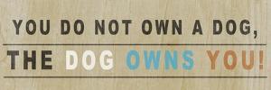 Dog Owns You I