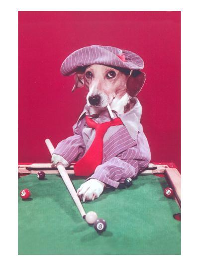 Dog Pool Shark--Art Print