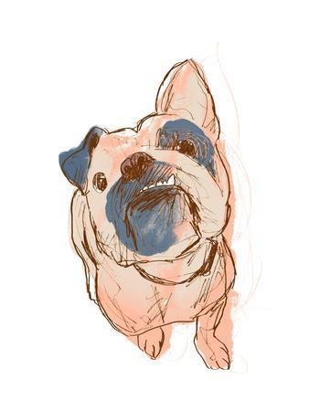 https://imgc.artprintimages.com/img/print/dog-portrait-bobo_u-l-q1eatdt0.jpg?p=0