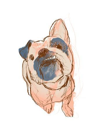 https://imgc.artprintimages.com/img/print/dog-portrait-bobo_u-l-q1eatdy0.jpg?p=0